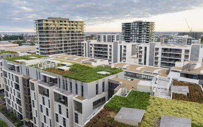 Growing Aware of Safety Around Green Roofs